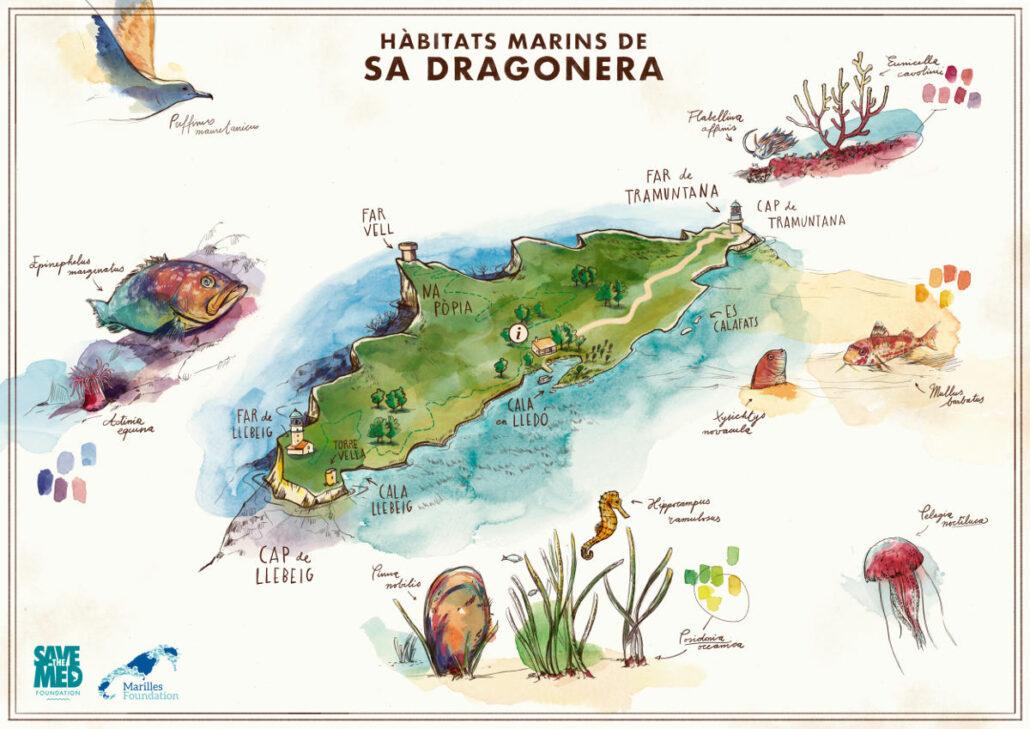 Das Meeresreservat Sa Dragonera