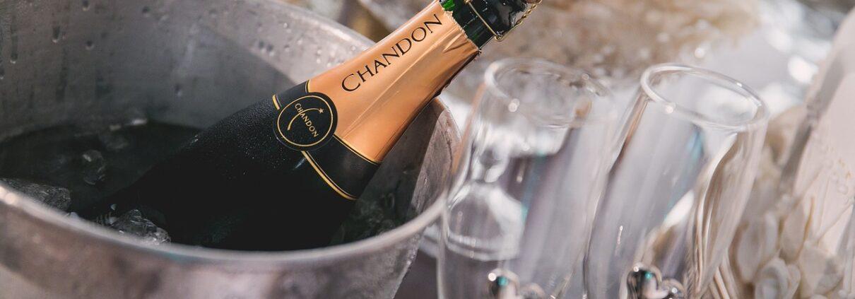 champan canpep andratx